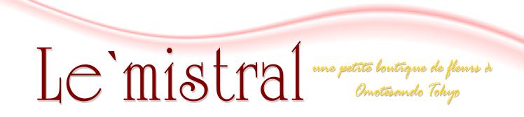 表参道の花屋 mistral (ミストラル)
